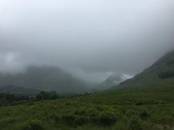 dat fog tho